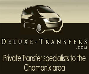 Deluxe transfers logo