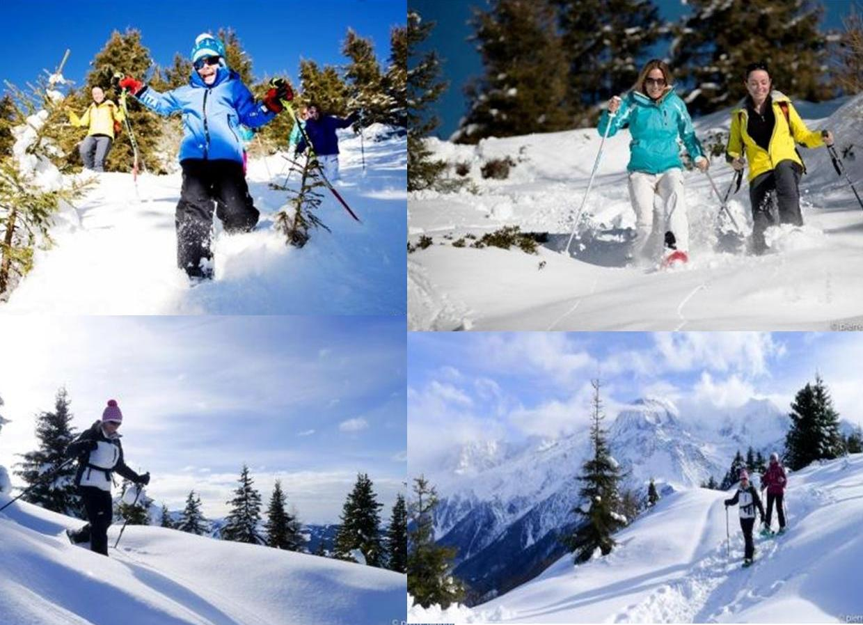 chamonix-cross-country-skiing-composition-raquettte