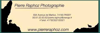 Originaire de la Vallée de Chamonix, je suis spécialisé dans la photographie animalière et paysagère de montagne. Je fait aussi beaucoup de photographie sportive et événementiel. Ma recherche principale est l'esthétisme de la lumière, de la composition et de l'émotion.