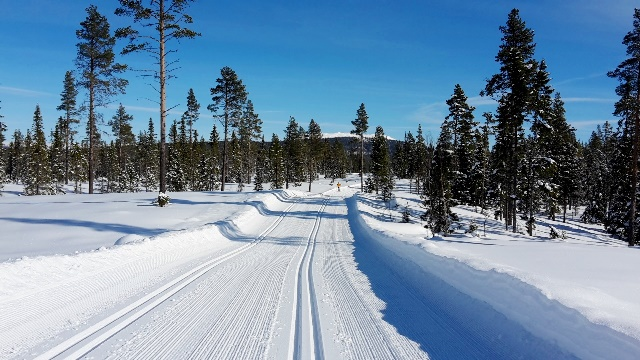 600 kilometers of groomed ski tracks